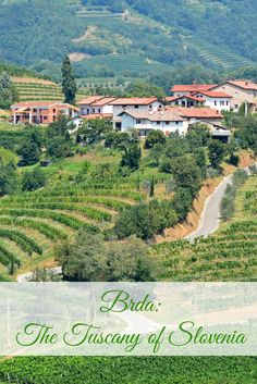 Brda, the land of hills, is nestled midway between the Alps and the Adriatic. It has been given the nickname the 'Tuscany of Slovenia' for its countless vineyards, rolling hills, and medieval villages.