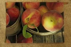 Baskets of Niagara Region Ontario Peaches   Photo by cubits on etsy.