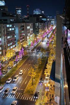御堂筋にイルミネーション点灯-本町のオフィス街に華やかな光の彩り