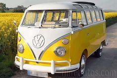Oldtimer VW T1 Bus Samba zum Mieten Mehr