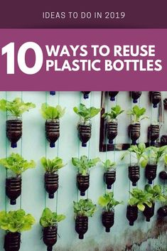 plastic One of the best things an individual can do in order to save the planet is to upcycle! Explore these wonderful ways to reuse those plastic bottles!