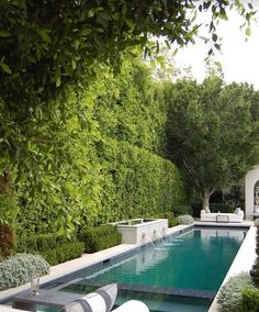Narrow pool with spa and water feature. House of Arch Pool. Narrow pool with spa and water feature. House of Arch Pool Spa, Langer Pool, Pool Landscape Design, Garden Design, Garden Hedges, Modern Pools, Modern Pool And Spa, Small Pools, Small Swimming Pools