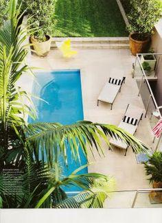 palm trees + pool // perfect backyard