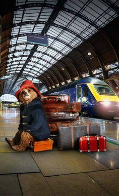 At the station... Teddy Bear Cartoon, Teddy Bears, England Uk, London England, Oso Paddington, London Spy, Teddy Hermann, Ben Whishaw, The Danish Girl
