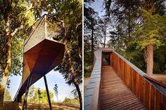 Les architectes Luís Rebelo de Andrade et Tiago Rebelo de Andrade ont voulu créer quelque chose d'extraordinaire, un ensemble de bâtiments qui, réunis, évitent l'orthogonalité des structures modernes.  Les Tree Snake Houses du Parc Pedras Salgadas, au Portugal comportent une paire de structures angulaires, à facettes, qui s'étendent dans les arbres et surplombent le sol de la forêt en pente. Leurs positions élevées et les ponts d'accès étendus, leur donnent une fonction de cocon.
