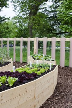 Counter Height Vegetable Garden : 1000+ images about Gardening with Physical Handicaps on Pinterest ...