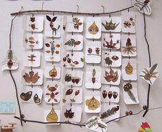 ideias para o outono