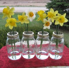 white daffodils! and a good idea to get long-stemmed flowers to stand upright.