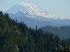 Sunrise point' Mt. Raineer~View of Mount Adams from the Naches Peak Loop Trail.