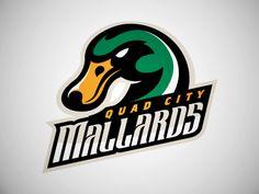 Mallards Alternate Logo by Matt Kauzlarich