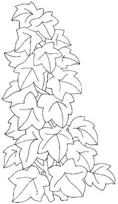 Ivy Leaf Template