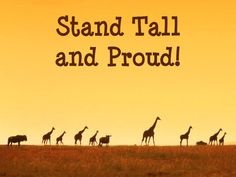 Stand tall and proud knowing you can achieve whatever you set your mind into doing! By standing tall and proud, you acknowledge you can accomplish anything you want, no matter what you face. Remember to stand tall and be proud of yourself feeling confident of your abilities.