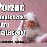 Oho, jutro poniedziałek... obrazek #1761 - ObrazkiOnline Coaching, Lol, Humor, Funny, Quotes, Pictures, Funny Stuff, Training, Quotations
