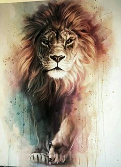 Gorgeous Lion painting with awesome depth and color. Lion of Judah painting. Inspiration Art, Art Inspo, Animal Drawings, Cool Drawings, Amazing Drawings, Art Drawings Beautiful, Art Amour, Lion Painting, Lion Art