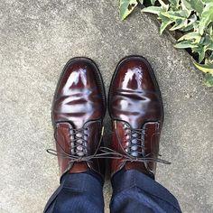 2017/03/17 06:46:22 sthkzn Alden 朝はまだ寒いです。 #alden #shoes #cordovan #mensshoes #sotd #shoesoftheday #オールデン #コードバン #紳士靴 #革靴