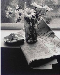 Andre Kertesz still life - Google Search More