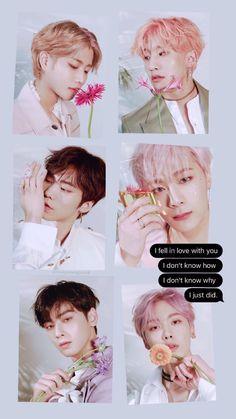 Astro Wallpaper, Jin, Lee Dong Min, Cute Funny Pics, Astro Boy, K Pop Star, Cha Eun Woo, Kpop Guys, Sanha