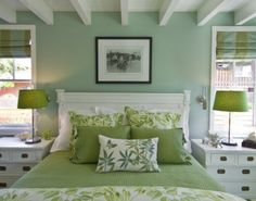 "Benjamin Moore color ""antique jade""......a cool, crisp atmosphere:)"