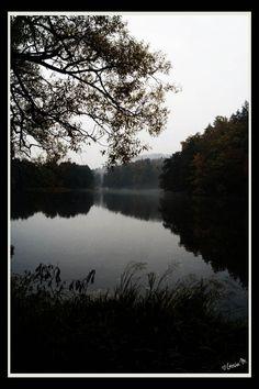 by ♡Gosia M more: http://xgosia-mx.tumblr.com   &   https://www.facebook.com/gosiamphoto  #lake #view #gosiam #forest #wood #fog #autumn