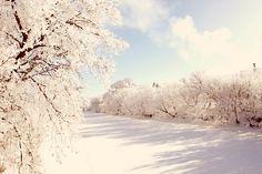 Beautiful North Dakota  -by @edenphotography