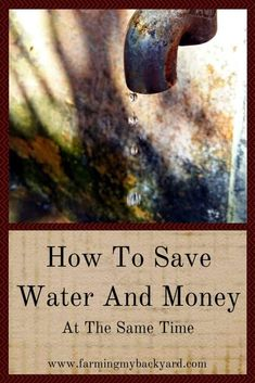 Just a few changes can make a big impact on how to save water and money. Make a few big changes to save more water and money with less effort! Rainwater Harvesting System, Water From Air, Lawn Sprinklers, Rain Barrel, Water Conservation, Save Water, Horticulture, Backyard Landscaping, Backyard Farming