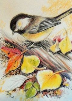 Art: Here Bug, Bug, Bug by Artist Paulie Rollins Pretty Birds, Beautiful Birds, Watercolor Bird, Watercolor Paintings, Bird Illustration, Illustrations, Art Aquarelle, Bird Coloring Pages, Bird Pictures