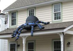 faire fuir les araignées avec de la menthe!