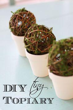 DIY Tiny Topiary Tut