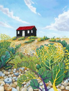 Red hut and sea kale by Emily Autumn Goddard. A corrugated hut sat on pebbles at Rye harbour with sea kale. Rye Harbour, Romney Marsh, Fine Art Prints, Vibrant, Ink, Gallery, Kale, Drawings, Artwork
