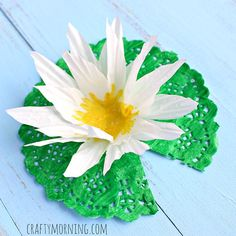 Learn how to make a lily pad craft using a doily and cupcake liner! It makes it look like a beautiful water lily! This could be a great kids craft.