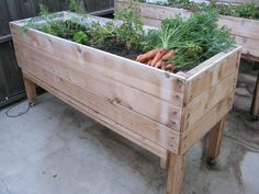 rolling planter - Google Search