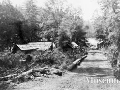 """Logging camp buildings near little Bear River (unknown year). """"From back of photo: 'Along the road to the Jap Camp."""" Alberetta Des Brisay Album - CR Museum"""