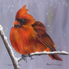 "Daily Paintworks - ""Winter Cardinal"" - Original Fine Art for Sale - © Janet Graham"