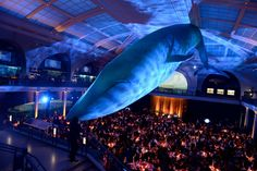 The American Museum of Natural History's Annual Gala – Vogue