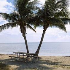Best peaceful campgrounds in the Florida panhandle here!