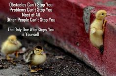 Obstacles can't stop you. Problems can't stop you. Most of all other people can't stop you. The only one who stops you is yourself.  #PictureQuotes, #Inspirational, #Obstacles   If you like it ♥Share it♥  with your friends.  View more #quotes on http://quotes-lover.com/