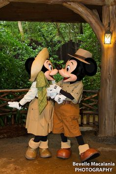 Animal Kingdom ~ Mickey & Minnie