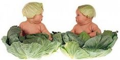 But I don't like cabbage........