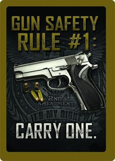 Tin Sign - Gun Safety #1 – GrayGoose Products.
