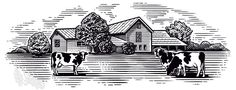 Woodcut illustration of farm with cows