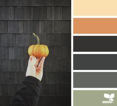 Halloween Hues via @designseeds
