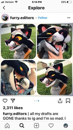 Tufted Flexi Wild Dog Ears great for furries fursuits gijinka festival