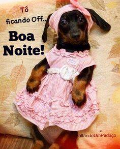 Boa noite #boanoite #frases