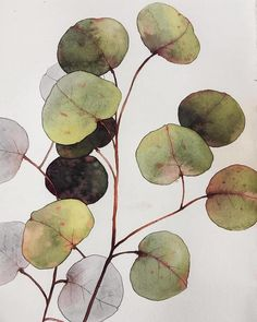 Beautiful artwork 💫💛👏 🔺 by ~~~ Feel free to be inspired of art with 😌 Watercolor Leaves, Watercolor And Ink, Watercolour Painting, Painting & Drawing, Watercolors, Botanical Art, Botanical Illustration, Illustration Art, Arte Floral