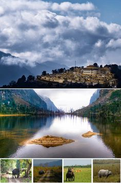 North East India Tour Package #northeastindiatour #northeastindiatourpackage…