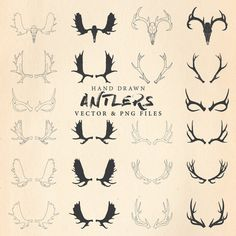 Rustic Hand Drawing Moose and Deer Antler by seaquintdesign Antler Drawing, Deer Drawing, Deer Antler Tattoos, Hunting Tattoos, Moose Clipart, Png Vector, Vector Format, Moose Tattoo, Neue Tattoos