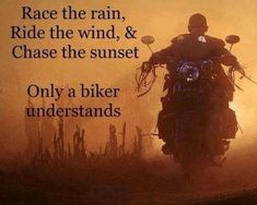 93 Biker Quotes memes colection for bike lovers wheel throttle gear therapy rider Motorcycle Memes, Scooter Motorcycle, Motorcycle Outfit, Hyabusa Motorcycle, Jeep Camping, Biker Chick, Biker Girl, Rider Quotes, Predator Helmet