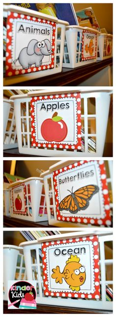 Book Basket Labels in Red and White Polka Dot {EDITABLE page included}...Great for Organizing your Classroom Library!