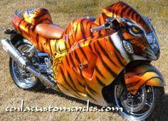Sports_Bike_-_Tiger1_489x356.jpg (489×356)