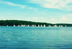 Yes, we're known for our lovely landscape at Cowan Lake State Park! Here, Sarah Newton has captured many sailboats along the tree line -- What fun!!   http://www.clintoncountyohio.com/parks-recreation.php  #Ohio #landscape